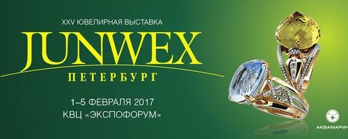 JUNWEX ПЕТЕРБУРГ - 2017